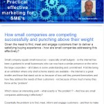 The Industrial Marketing Agency Newsletter, November 2013: How small companies are competing successfully